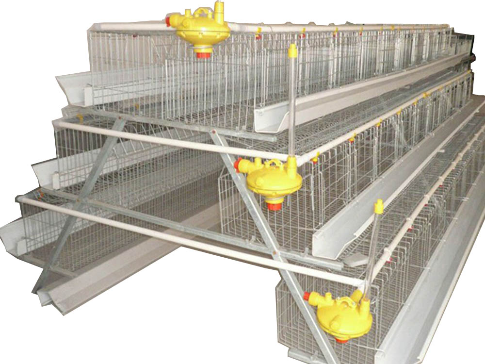 Poultry Cage (Chicken Cage) Machine Uganda, Kongei Machinery Uganda (Kongei General Traders-SMC Limited) for all your Agricultural Machines and Equipment Supplies in Kampala Uganda, East Africa: Kigali-Rwanda, Nairobi-Mombasa-Kenya, Juba-South Sudan, DRC Congo, Ugabox